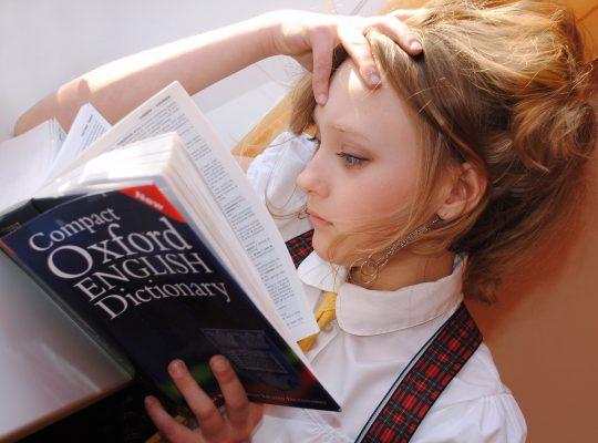 szótárból tanulás
